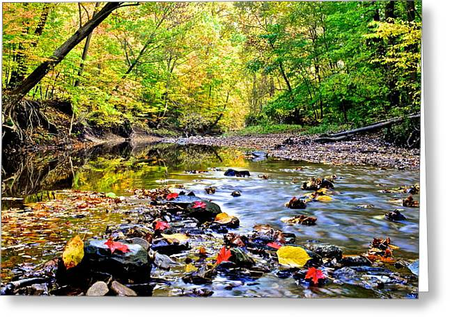 Awesome Autumn  Greeting Card by Frozen in Time Fine Art Photography