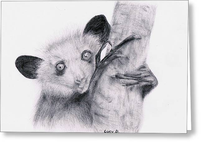 Greeting Card featuring the drawing Aye-aye by Lucy D