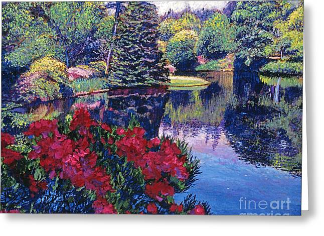 Azaleas In Spring Greeting Card by David Lloyd Glover