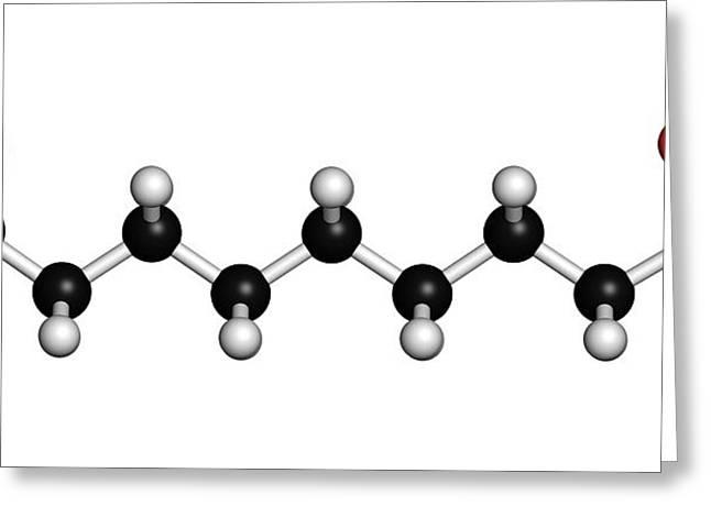 Azelaic Acid Nonanedioic Acid Molecule Greeting Card by Molekuul