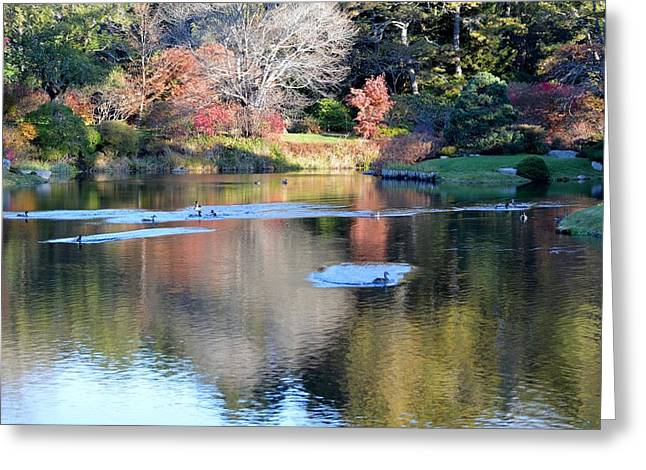 Azelea Asticou Autumn Reflections Greeting Card by Lena Hatch