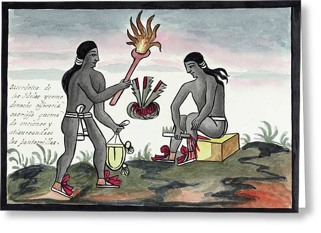 Aztec Blood Sacrifices Greeting Card