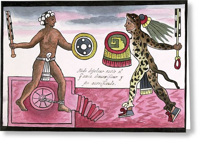 Aztec Sacrificial Fight Greeting Card by Library Of Congress