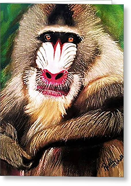 Baboon Stare Greeting Card by Renee Michelle Wenker
