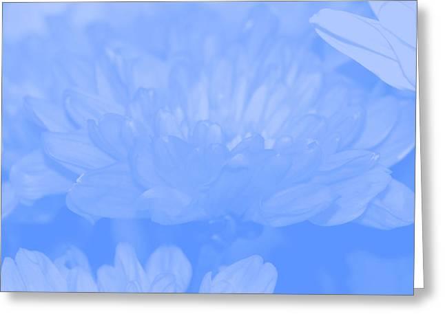 Baby Blue 1 Greeting Card by Carol Lynch