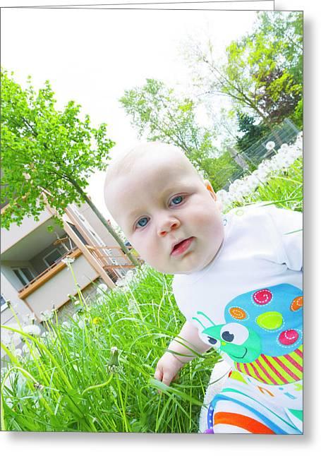 Baby Boy In A Garden Greeting Card by Wladimir Bulgar