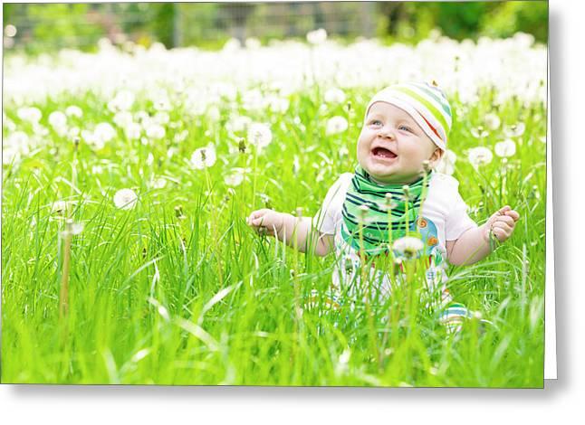 Baby Boy With Dandelions Greeting Card by Wladimir Bulgar
