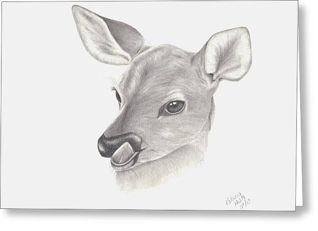 Greeting Card featuring the drawing Baby Deer by Patricia Hiltz