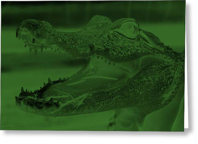Baby Gator Neg Olive Green Greeting Card by Rob Hans