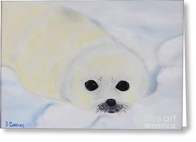 Baby Harp Seal Greeting Card by Bev Conover