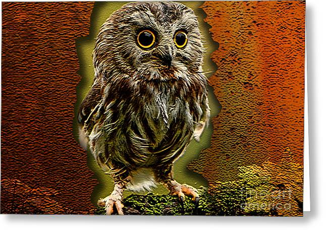 Baby Owl Greeting Card by Marvin Blaine