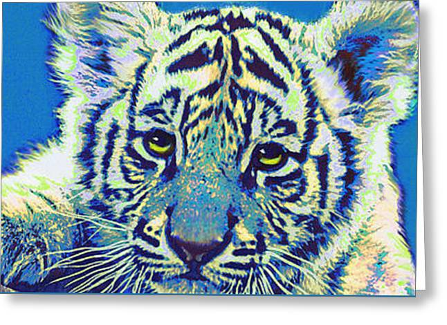 Baby Tiger- Blue Greeting Card