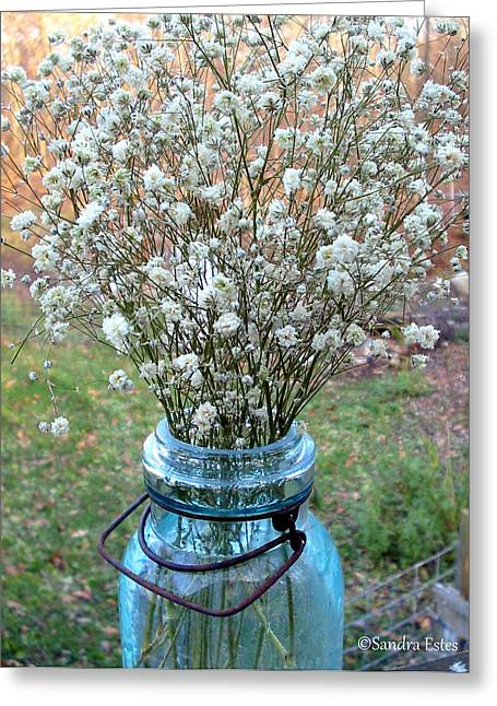 Baby's Breath Bouquet Greeting Card