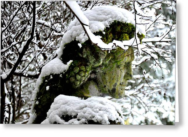 Bacchus Statue Under Snow Greeting Card