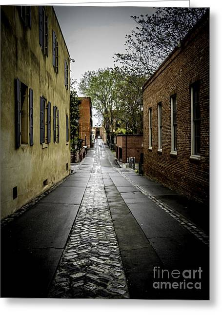 Back Alley Greeting Card by Mitch Shindelbower