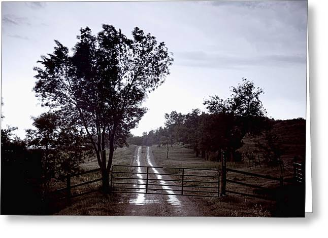 Back Country Road And Then The Rain Came Greeting Card by James BO  Insogna