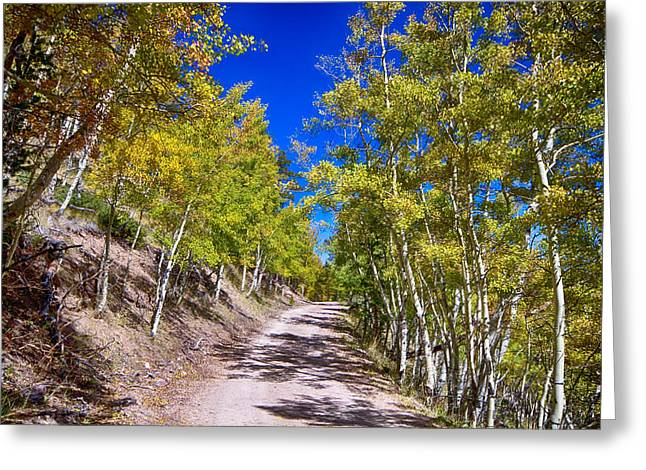 Back Country Road Take Me Home Colorado Greeting Card by James BO  Insogna