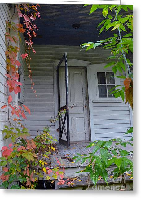 Back Porch Door Greeting Card by Jill Battaglia
