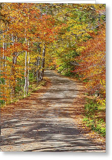 Back Road Daydream Greeting Card by Gregory W Leary