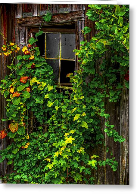 Back Window Greeting Card by Russ Burch