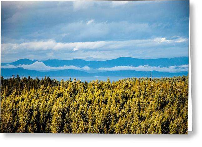 Backroad Ocean View Greeting Card