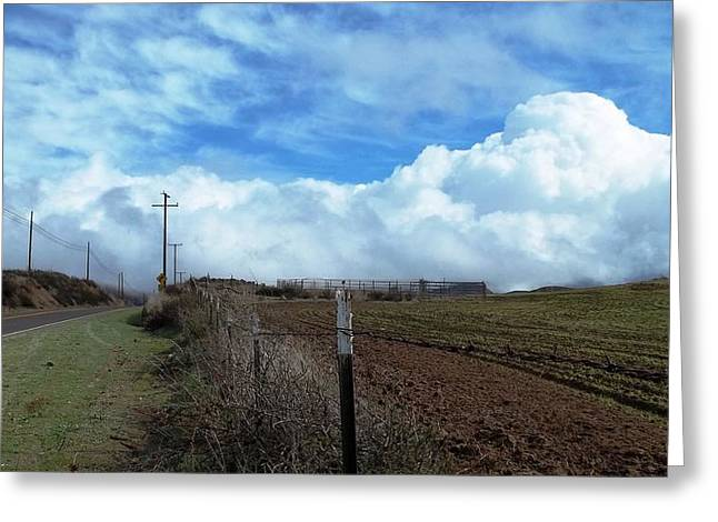 Backroads- Telephone Poles- And Barbed Wire Fences Greeting Card