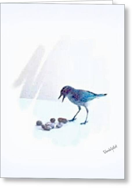 Backyard Bird Greeting Card