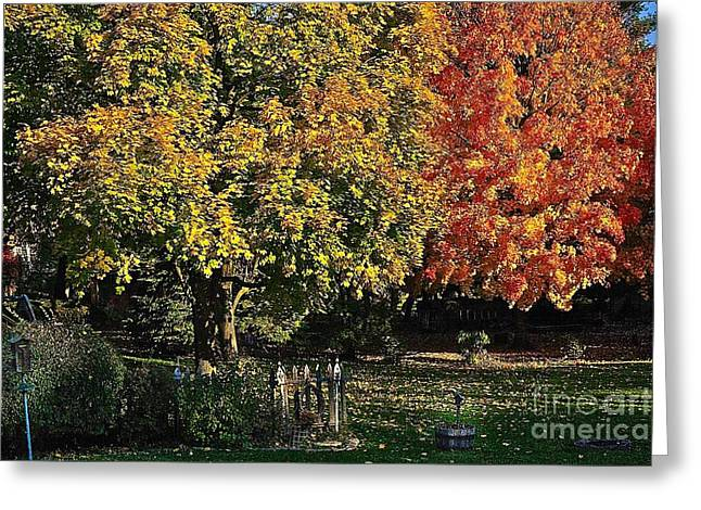 Backyard Morning In The Fall Greeting Card
