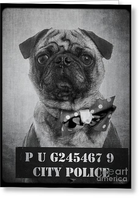 Bad Dog Greeting Card by Edward Fielding