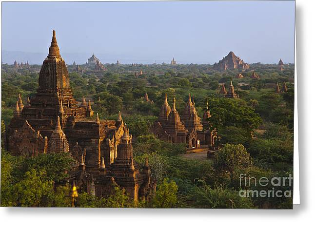 Bagan Plains Myanmar Greeting Card by Craig Lovell