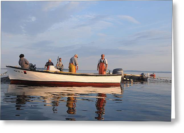 Greeting Card featuring the photograph Bait Fishers by Paul Miller