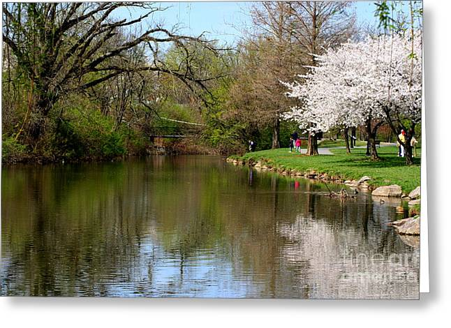 Baker Park Greeting Card by Patti Whitten