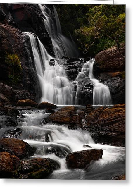 Bakers Fall Iv. Horton Plains National Park. Sri Lanka Greeting Card by Jenny Rainbow