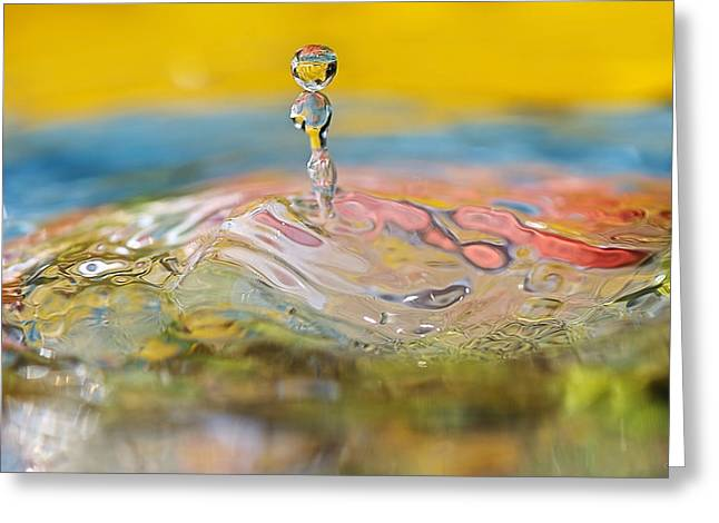Balancing Act Greeting Card by Lisa Knechtel
