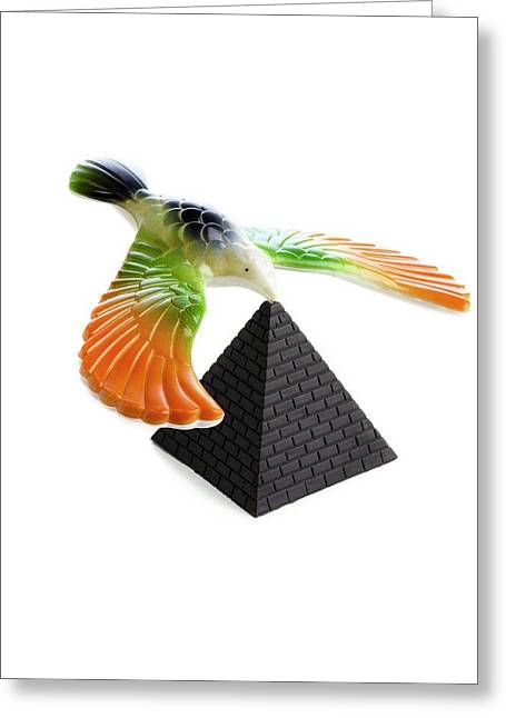 Balancing Bird Toy Greeting Card by Science Photo Library