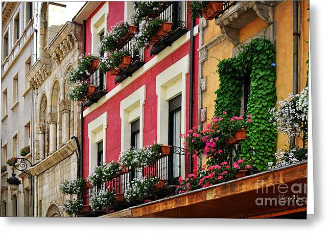 Balconies Of Leon Greeting Card by Mary Machare