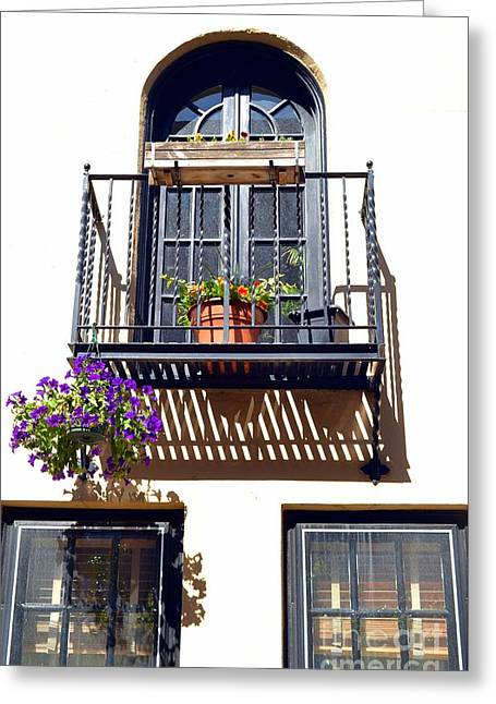 Balcony With Flower Greeting Card by Bener Kavukcuoglu