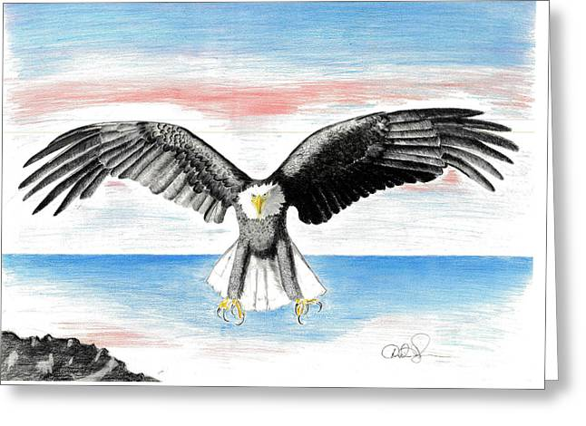 Bald Eagle Greeting Card by David Jackson