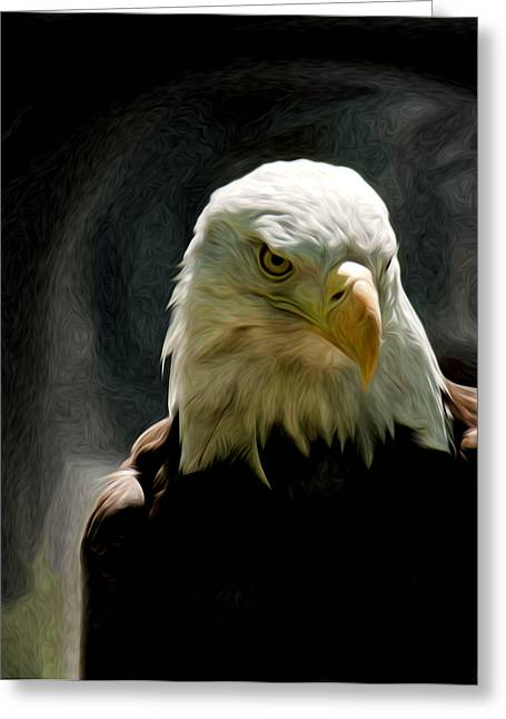 Bald Eagle Giving You That Eye Greeting Card