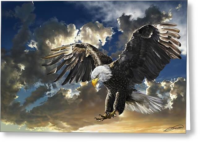 Bald Eagle Haliaeetus Leucocephalus Greeting Card