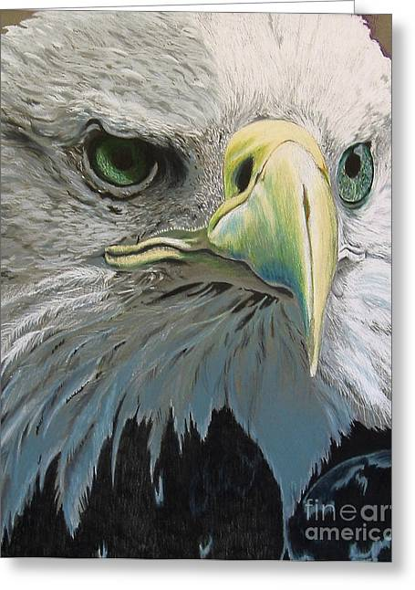 Sold Bald Eagle Greeting Card