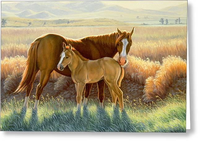Bald-faced Sorrel And Colt Greeting Card by Paul Krapf