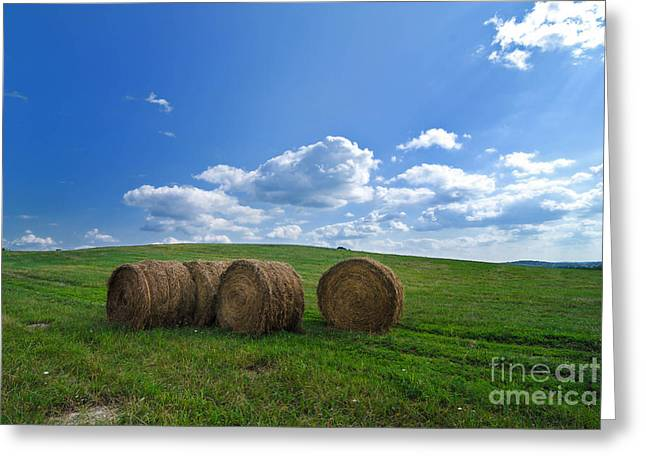 Bales Of Hay In A Field Greeting Card by Amy Cicconi