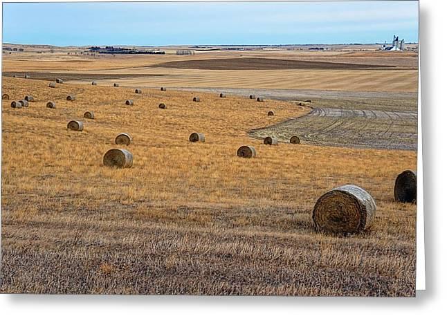 Bales Of Hay Greeting Card