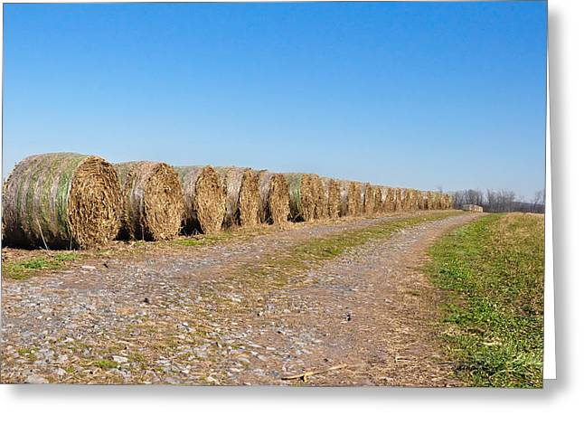 Bales Of Hay On An Old Farm Road Greeting Card by Bill Cannon