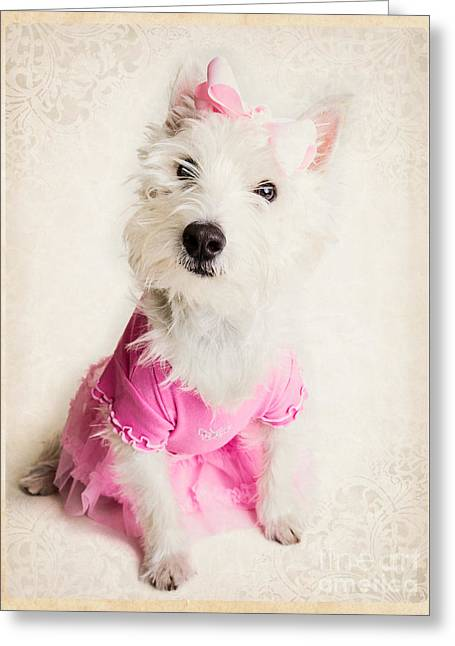 Ballerina Dog Greeting Card by Edward Fielding