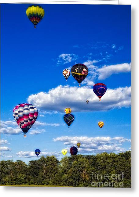 Balloonfest Greeting Card