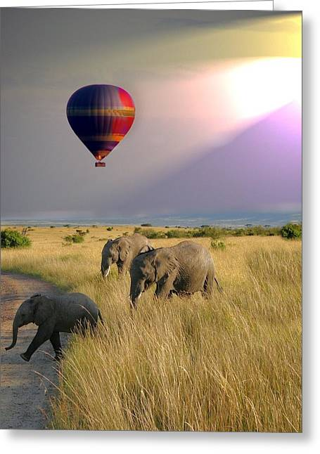 Baloon Safari Greeting Card
