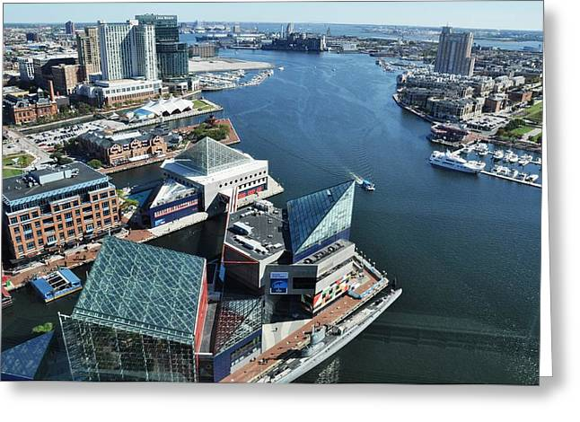 Baltimore Harbor Greeting Card by Andrew Dinh