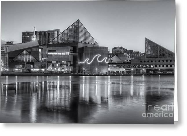 Baltimore National Aquarium At Dawn Iv Greeting Card by Clarence Holmes